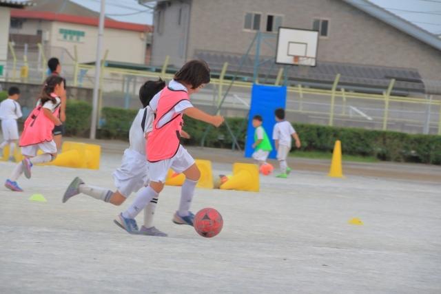soccer39.jpg